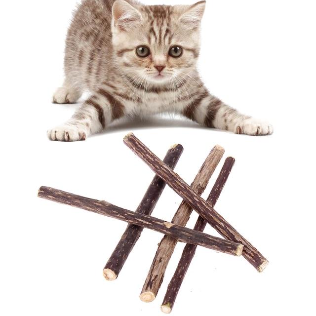 5 pcs Murni Alami Catnip Pet Cat Silvervine Actinidia Buah Pasta Gigi Tongkat Cat Pembersihan Gigi Molar Matatabi Kucing Makanan Ringan Tongkat