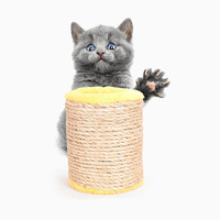 Cat Scratcher Furniture Toys Scratch Post Balls Sound Toys For Kitten Cats Fun Supplies Protector Cat