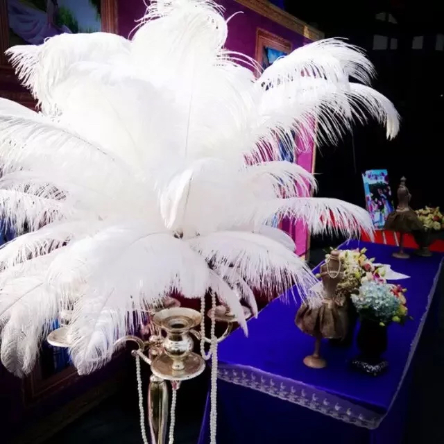 Free Shipping 100pcs 40 45cm 16 18 Inch White Ostrich Feathers