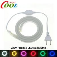 LED Neon Strip AC220V 120 LED Meter 2835 Flexible Neon Light Waterproof Outdoor Decorative LED Strip
