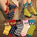 Atacado de Boa qualidade meias de algodão respirável mulheres bonitas meias bonitos dos desenhos animados Meias designer de coruja 3D
