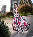 2017 Новая мода лето печати шифон dress женщины О шея с коротким рукавом чешские maxi и long dress