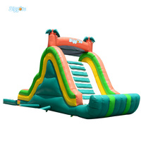 Hot Selling Giant Adults Inflatable Water Slide With Pool For Amusement Park