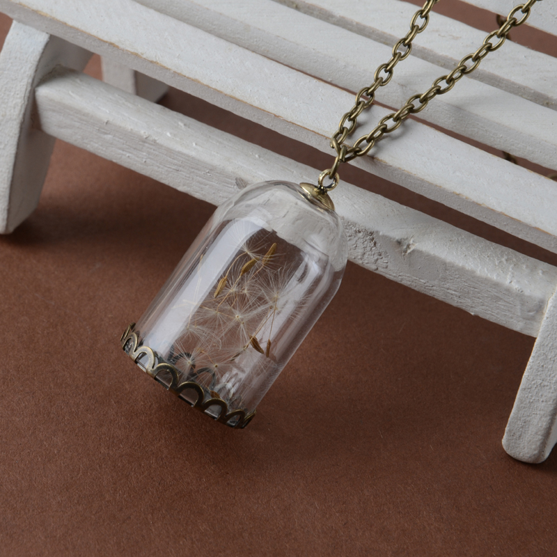 Sweet Several Dandelions Cage Vial Necklaces Bronze in chain