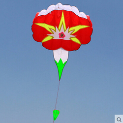 Outdoor Fun Sports New  High Quality 5m Power  Morning Glory Software Kite /Flower Kites Good Flying  Factory Outlet