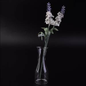 AMW Home Decor Transparent Glass Modern Table Small Vase