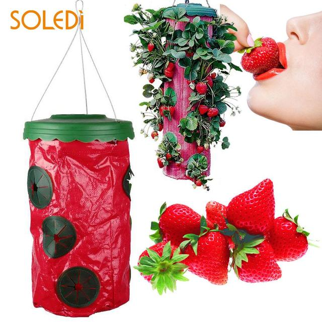 Strawberry Upside Down Hanging Planter System Outdoor Garden 9 Holes Planting