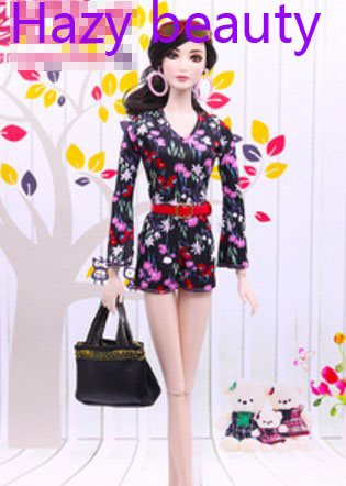 Hazy beauty doll clothes new styles fashion dress for BB dolls BBI918