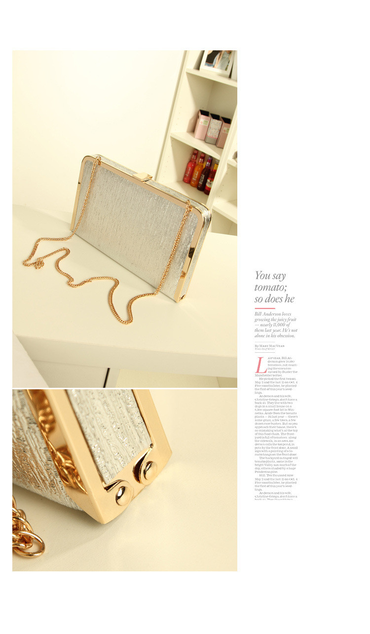 gold hand bag (2)