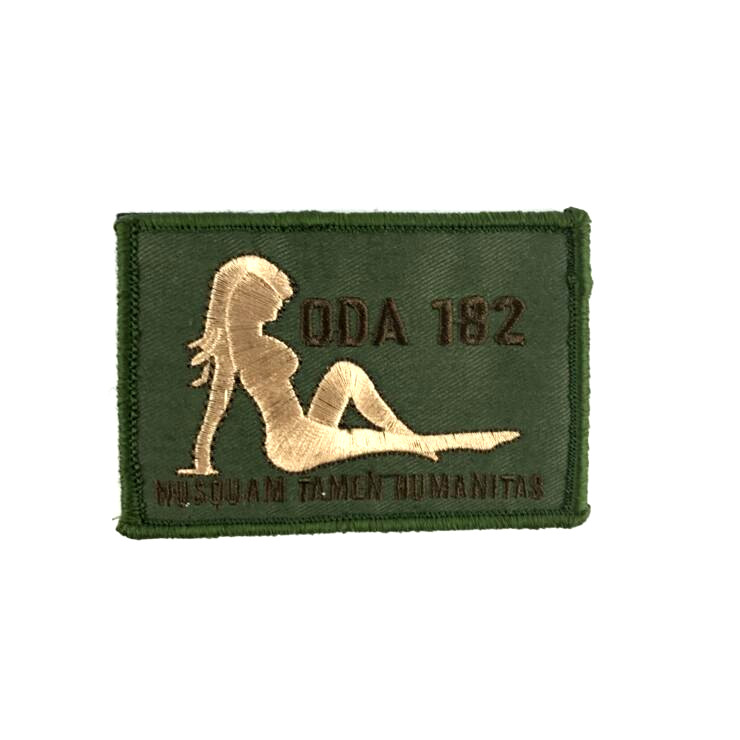 2pcs Embroidery ODA 182 Tactical <font><b>Patch</b></font> Hook Loops <font><b>Sex</b></font> Lady Military Badge Hot Girl Brassard Army Green Combat Armband 10*7cm image