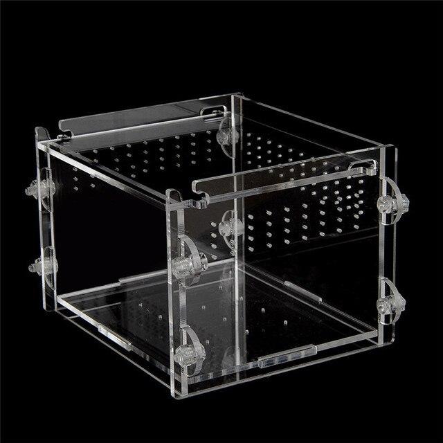 Acrylic Terrarium
