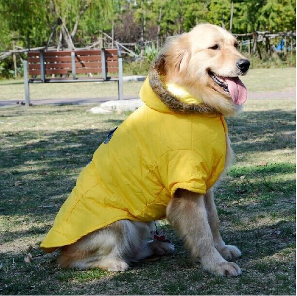 Grote Grote Hond Winter Kleding Golden Retriever Windjack Hoody
