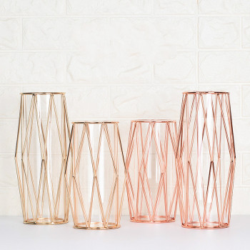 Modern Fashion Champagne Gold Hydroponic Flower Pot Vase Nordic Iron Rose Gold Vase Study Hallway Roon Home Wedding Decoration 1