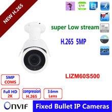 H.265 challenge HD 5mp IP digital camera Three.6mm lens out of doors  IR weatherproof CCTV safety ip net surveillance Digicam