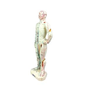 Image 4 - 26 センチメートル医療中国医学経絡鍼灸モデル経穴マネキン鍼モデル
