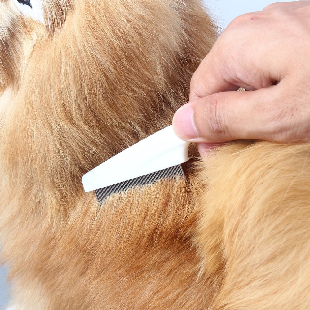 2pcs/lot Pet Dog Hair Comb Stainless Pin Grooming Brush Comb for Head Lice Cleaning Tool For Cats
