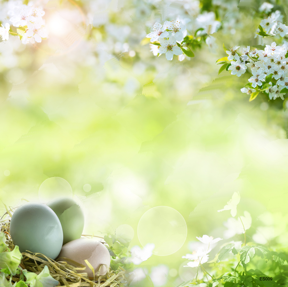 LIFE MAGIC BOX Easter Photo Background Photography Backdrops Photocall for Photo Studio easter day basket branch bunny photo studio background easter photography backdrops page 8