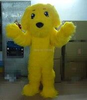 Amarillo peludo perro de orejas largas perro adulto de la mascota del traje traje