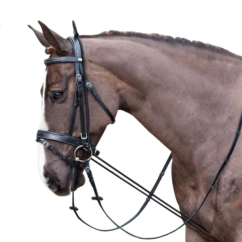 3m Horse Reins Elastic Black Neck Stretcher Horse Riding Full Bridle Strape Rope Wear-resistant Equestrian Supplies