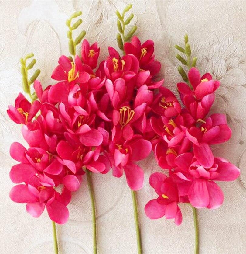 Download 5500 Gambar Bunga Freesia Gratis Terbaik