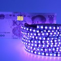 UV Ultraviolet led strip 395-405nm 3528 SMD 60leds/m 120leds/m led ribbon black PCB light DJ Fluorescence party lighting