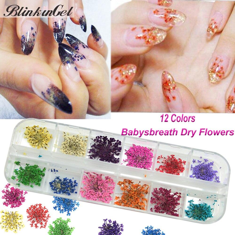 BlinkinGel 36pcs Babysbreath flores secas reales para Navidad Nailart Jewelry de Nail Art Decorations 3D embalado en una caja larga