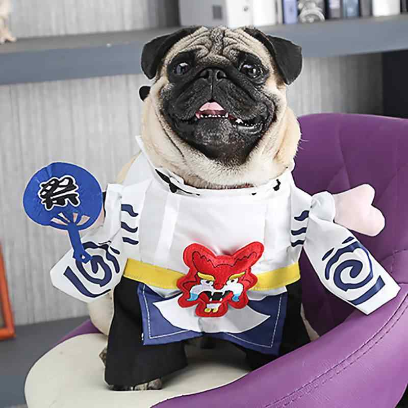 The rubie's costume company harley quinn dog costume goes perfectly with the rubie's mexican dog & cat serape. Pet Dog Cat Halloween Costume Party Funny Cosplay Suits Puppy Kitten Japan Style Outfit For Dress Up Party Costume Supplies Dog Sets Aliexpress