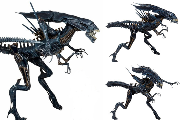 2 style High Quality NECA ALIEN Original toy Aliens vs Predator xenomorph Queen mother PVC action figure Collectible Model Doll neca a nightmare on elm street freddy krueger 30th pvc action figure collectible toy 7 18cm