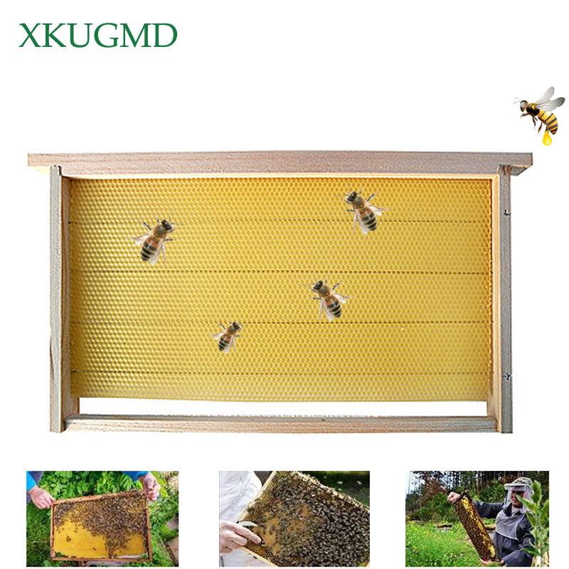 5pcs Beekeeping Bar Bee Hive Frame Avoid Agitation Plastic Interval 37cm White