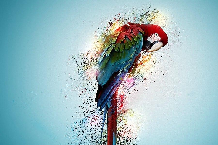 Online Get Cheap Bird Artwork Canvas -Aliexpress.com   Alibaba Group