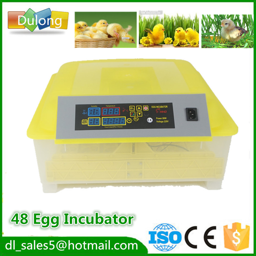 Hot Sale Fully Automatic Egg Incubator For Hatching 48 Chicken Duck Poultry Eggs  Mini  Brooder Hatchery Machine fully automatical turning 48 eggs incubator poultry chicken duck egg hatching hatcher new modle transparent bottom