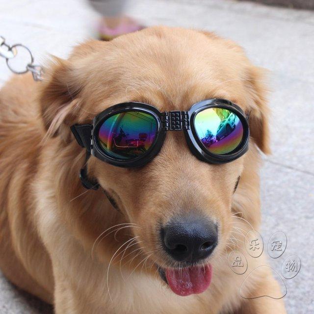 Pet dog filhote de cachorro pet dog dobrável óculos de sol óculos de  proteção uv óculos 41d3eed449