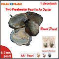 50pcs Individually Vaccm Packed Wish Pearl in Oyster TWIN AA+6-7mm Round Pearl Oyster with Natural Pearls