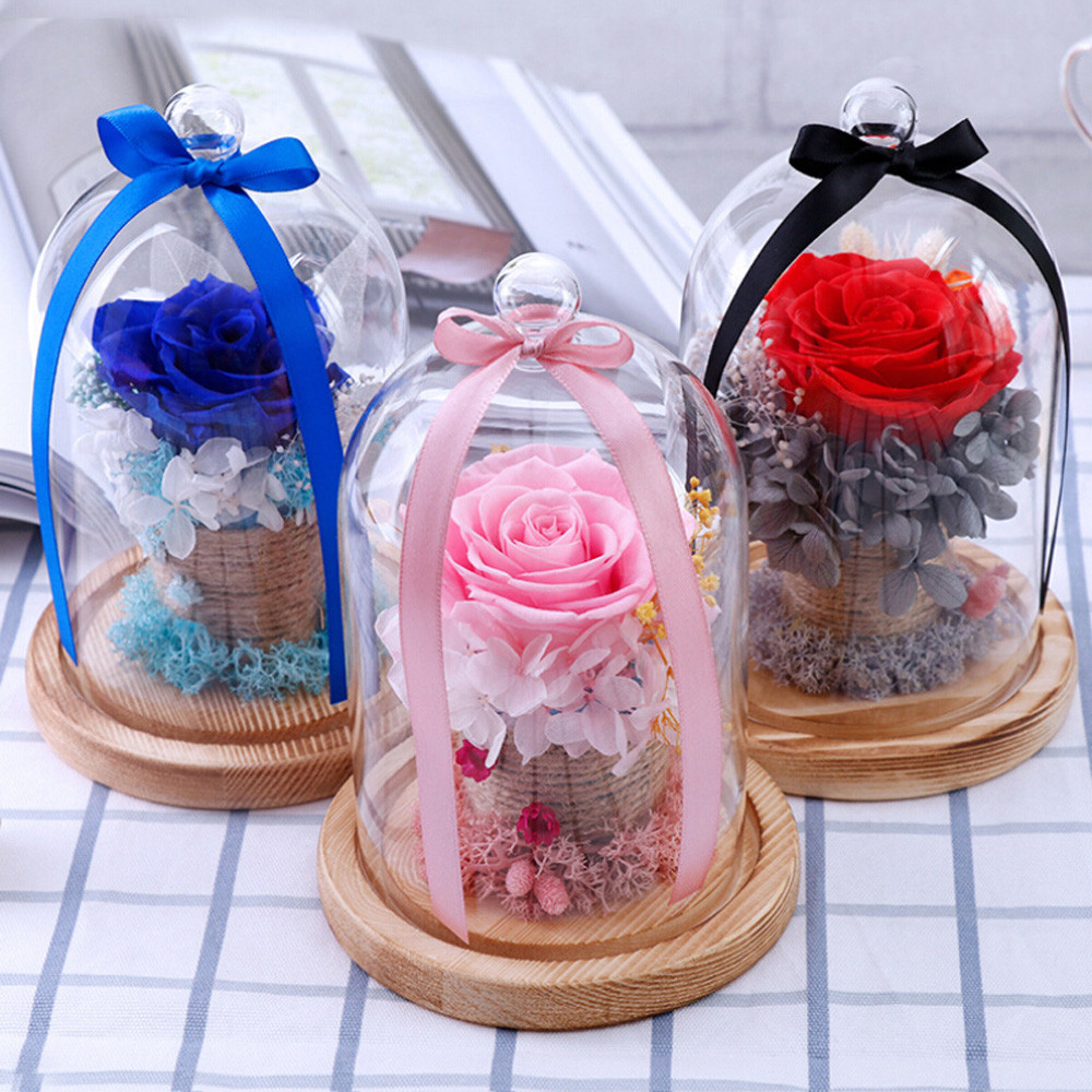 2pcs Glass Display Dome with Wooden Base DIY Flower Vases Cloche ...