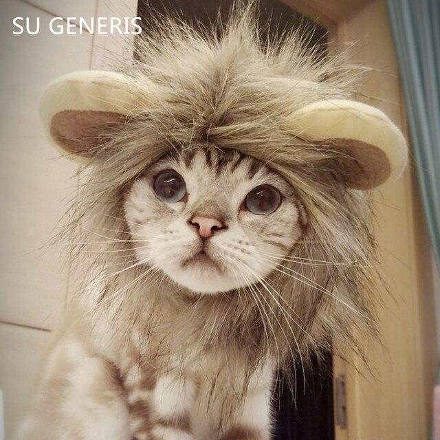 leeuwenkop kat