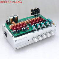 Breeze Audio & Weiliang AudioTPA3116 5.1 surround sound 6 channel SW 100W+50W*5 Amplifier Finished product Tone Adjust Amp