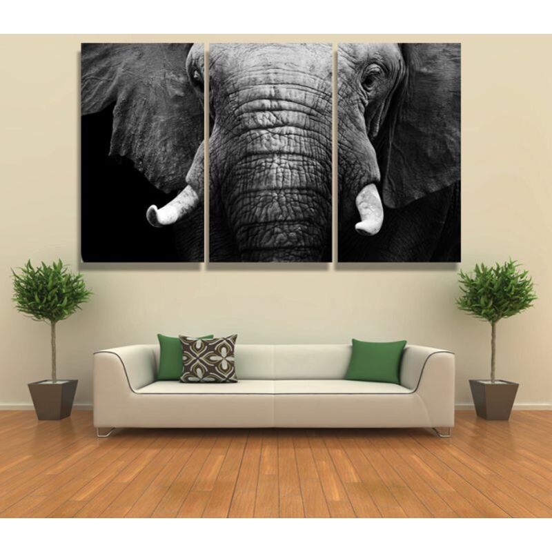Framed 3pcs Abstract white black elephant Modern home ...