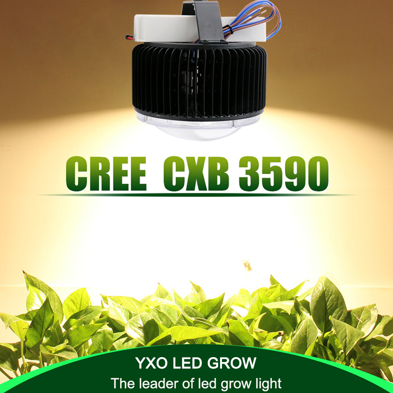 Cree CXB3590 100W COB led grow light Full Spectrum Meanwell driver for Hydro Medical Indoor Plant Veg Flowers Grow Tent Lighting populargrow 400w cob full spectrum led grow light for grow tent box indoor greenhouse commercial hydro plant similar to sunlight
