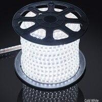 AC 110 V 220 V RGB 5050 водонепроницаемая гибкая светодиодная лента + pulg, 60 Светодиодный s/m Светодиодный светильник с регулируемой яркостью, фабрика п