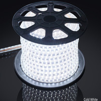 AC 110V 220V RGB 5050 Waterproof Flexible LED Strip+pulg,60leds/m LED Lighting dimmable,Factory provide good quality