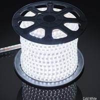 AC 110V 220V RGB 5050 Waterproof Flexible LED Strip+pulg,60leds/m LED Lighting dimmable,Factory provide good quality