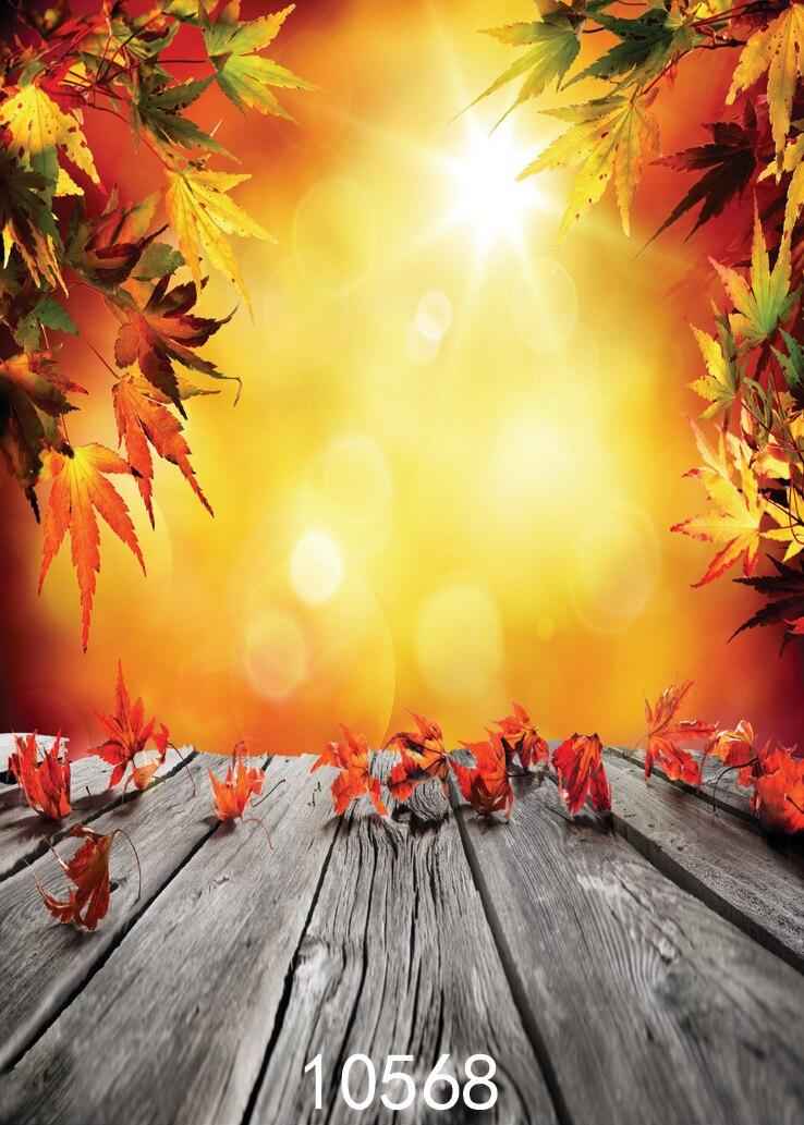 목재 바닥 무료 배송 비닐 사진의 햇살과 나뭇잎 인쇄 배경 사진 스튜디오 바닥 배경 배경
