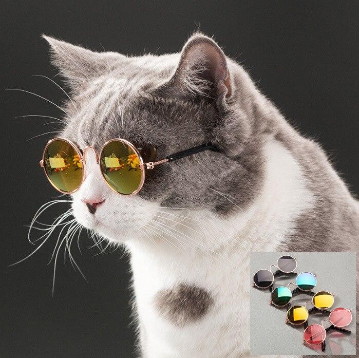 80e62ff9055858 Mode Chat Lunettes de soleil pour Animaux Accessoires D été Chiens Chats  Lunettes Toilettage Noir Vert dans Jouets pour chats de Maison   Jardin sur  ...