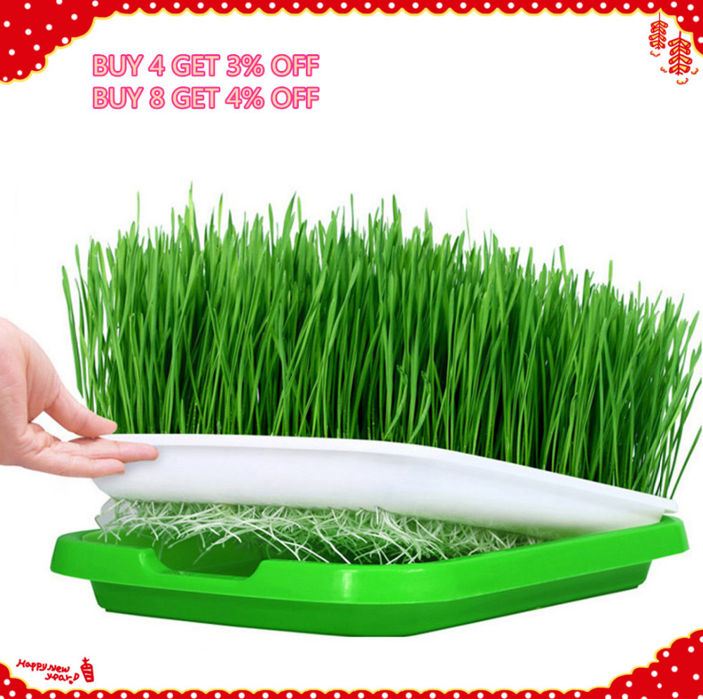 VICTMAX 5sets Double Layer Seed Sprouter Nursery Tray Hydroponics Basket Flower Plant Germination Tray Box Green