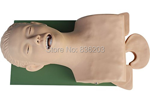 IntBuying Teaching Study Model Airway Management Trainer Intubation ...