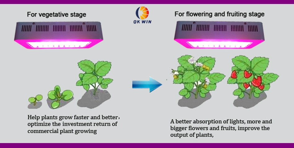 QkwinLED Grow Light from aliexpess