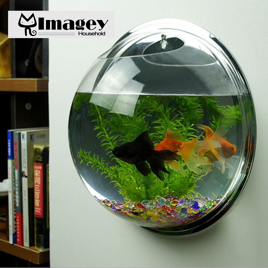 Fish for aquarium online - Imagey Acrylic Transparent Wall Plant Hanging Vase Wall Aquarium Bowl Fish Tank Aquarium Home Decoration Plant