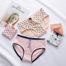 1 pcs Mulher Cueca De Algodão Bonito elefante pequeno Feminino Meninas Sexy  Calcinhas Cuecas Calcinhas Intimates Lingerie para A.. 61023ac7b21