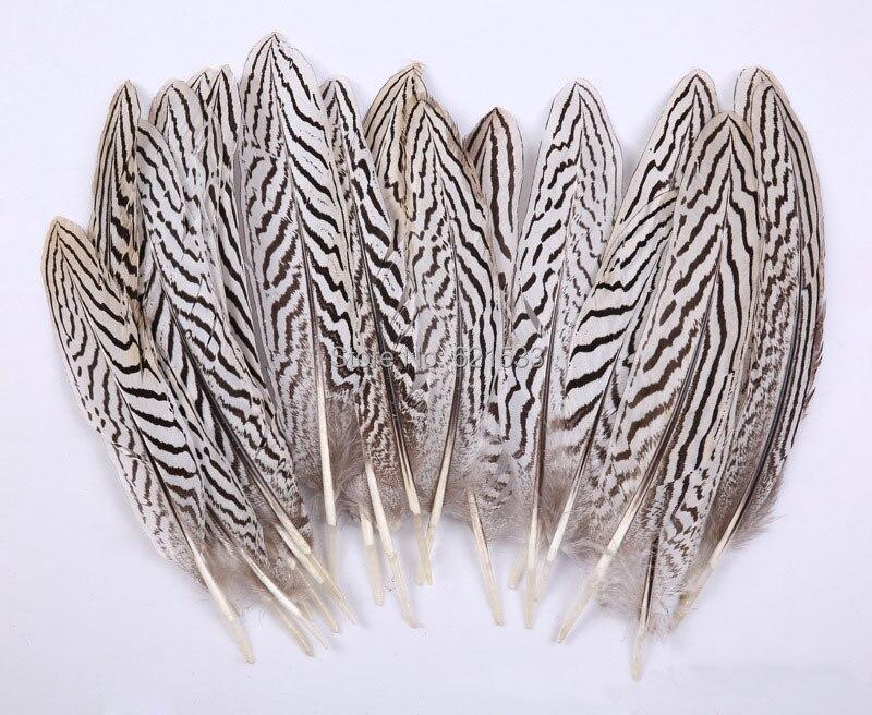 20pcs Silver Pheasant Black White 6-9cm Feathers DIY Art Craft Millinery NEW