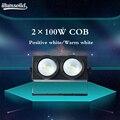 2x100 Вт COB DMX сценическое освещение СИД Блиндер/теплый белый Dmx сценический ТВ студия церковь